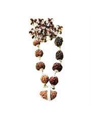Navagrah Rudraksha Mala Package (1 to 9 Facet)